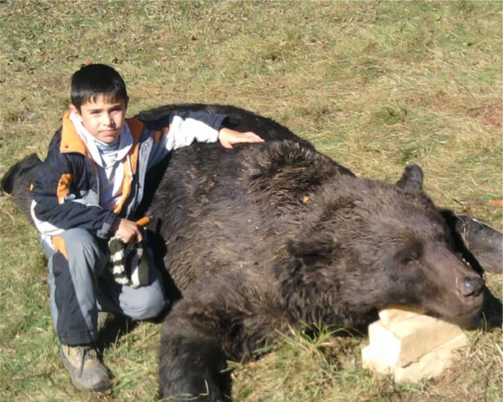 Where are biggest brown bear from Europe? - Romania Hunting